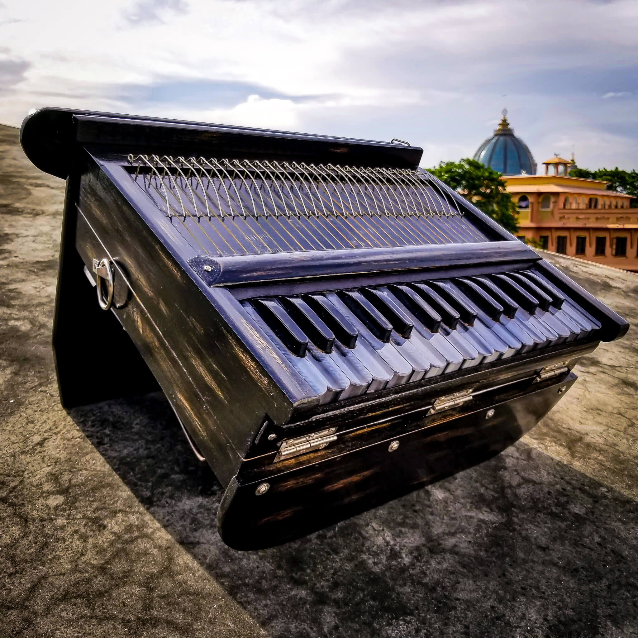 Harinam Harmonium – India